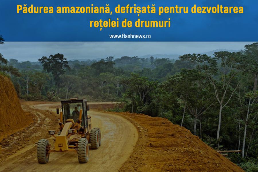 Defrișări rețea drumuri Amazon