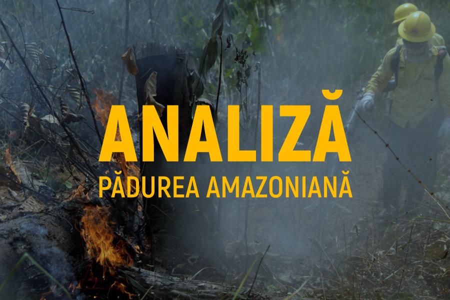 Incendiu în Padurea Amazoniana